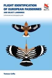Flight Identification of European Passerines and Select Landbirds