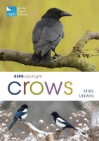RSPB Spotlight Crows
